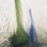 groen en blauw staand